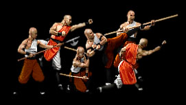 The Shaolin Monks